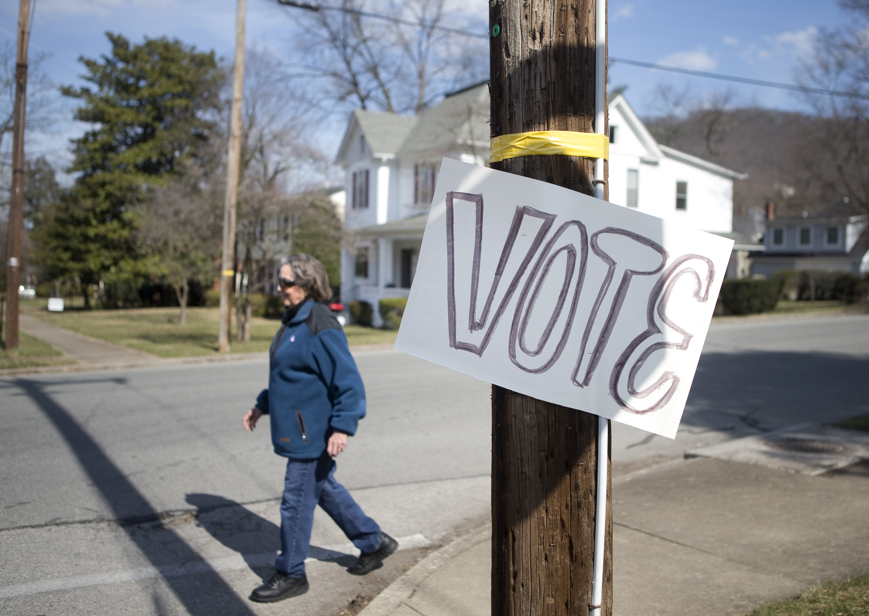 Board of supervisors attracts four candidates for Natural Bridge, South River seats