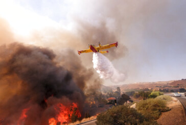 Northern California fire death toll up to 42